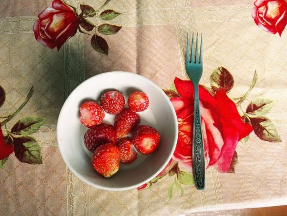 Erdbeeren_Kasachstan