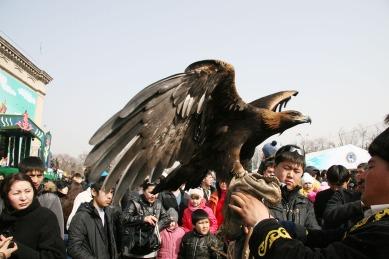 Kasachstan_Greifvogel