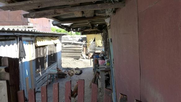 Stall_Kasachstan