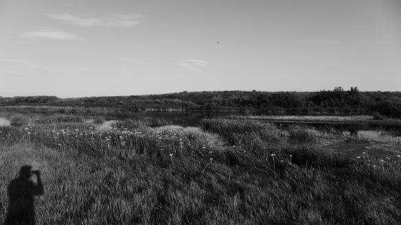 Fluss_Landschaft_Selbstporträt