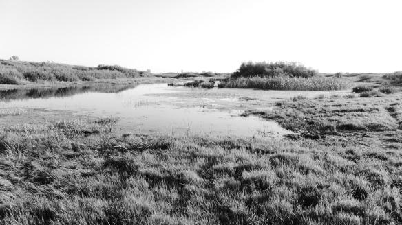 Fluss_Tobol_Kasachstan