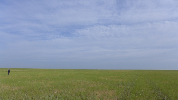 Steppe Kasachstan