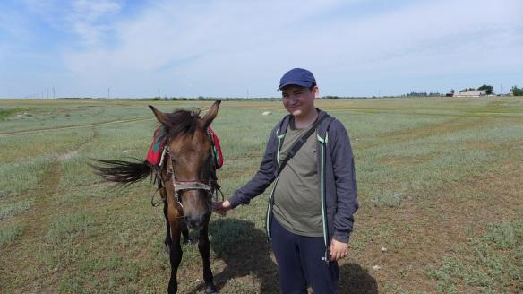 Pferd_mit_Berliner_Kasachstan