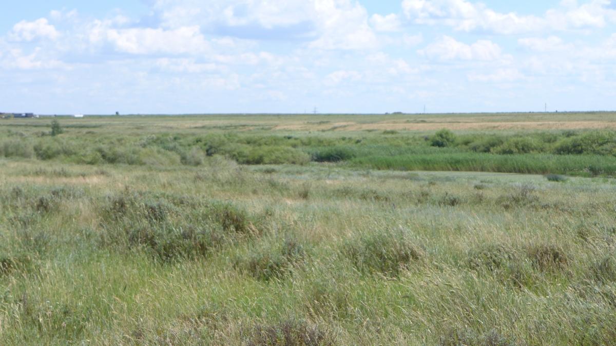 Fernsehen in Kasachstan